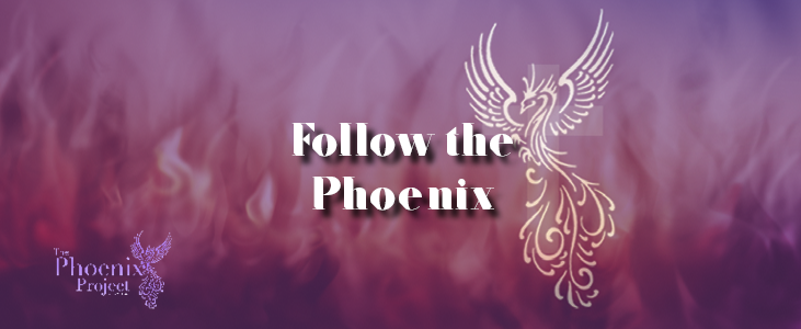 Follow the Phoenix | The Phoenix Project | CSD Marketing